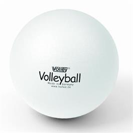 Softball Volleyball 210