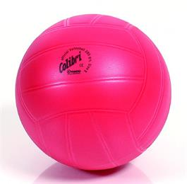 Spielball Colibri Volleyball